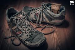 twentyninth day of danbo - try walking in my shoes photo by M. Kafka