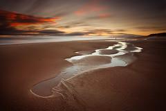 Seaton Sluice Beach photo by Alistair Bennett
