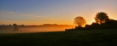 Sunrise New Forest Style - Explore 30th October 2013 photo by Spectacle Photography