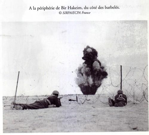 1942 Bir Hakeim - Bombe au bord des barbelés