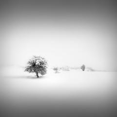 Κάθαρσις | Catharsis IV –  Spellbound photo by Julia-Anna Gospodarou