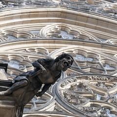 prague, st. vitus photo by ewaldmario