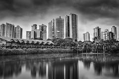 Botanical garden (Curitiba) photo by marcelo.guerra.fotos