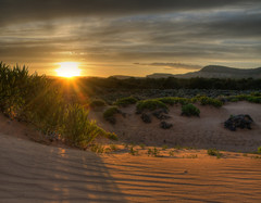 Coral Pink Sand Dunes photo by Habub3