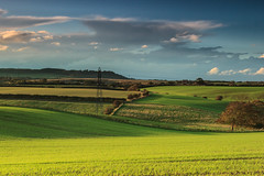 Rolling Fields, Autumn Evening photo by Peter Whysall