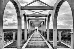 The bridge #2 - EXPLORE photo by Fabiana Insolda