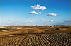 Preparing land for cultivation.    Andalucia. photo by zanzibarcordoba