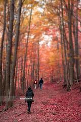 Hiking photo by ¡arturii!