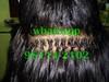 20940812980_9f8777926e_t