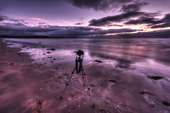 Perfect Harmony photo by Gareth Wray Photography -Thanks = 4.5 Million Hits