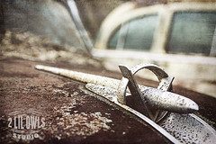 Old cars photo by D~Love