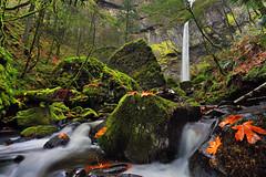 Elowah Falls photo by sameermundkur