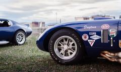 Shelby Cobra Daytona Coupé photo by GL photographie