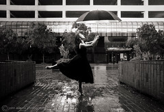 Amelia No. 6 (Dancing in the Rain) photo by John Adkins II