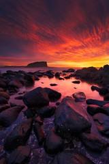 Minnamurra - Stack Island Sunrise photo by stevoarnold