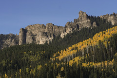 Aspen beneath Cimarron Ridge (Explored) photo by Jeff Mitton