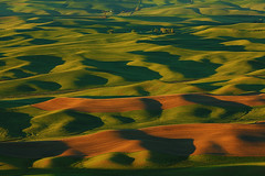 Rolling Hills of Palouse photo by sameermundkur