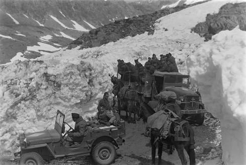 1945- Authion - 1 convoi auto, avec jeeps et camions GMC de la 1re DFL  croise une colonne muletière du Royal Brel Corps britannique sur la route Isola - Vinadio par le col de la Lombarde, en direction de l'Italie -ECPA