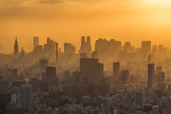 Sunset in Shinjuku photo by davidcl0nel