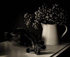 Still life with a violin photo by V Photography and Art