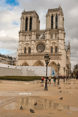 Notre Dame. photo by ¡arturii!