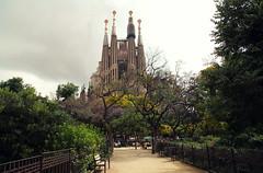 Sagrada Família. [Explored] photo by frasse21