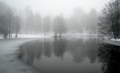Winter Fog photo by bjorbrei