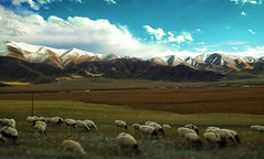 Tian Shan Mountains photo by arjalvaran