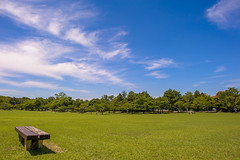 [Explored] Summer grassland and sky photo by TORO*