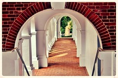 University of Virginia ~ HSS! photo by karma (Karen)