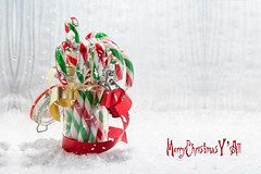Candy canes photo by le cabri