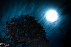 Moonlight photo by dennis-zimmermann