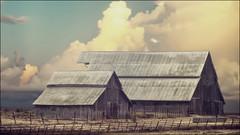 barn storm photo by giancarlo_III