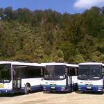 School Bus Charters