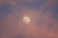 Lluna a la posta de sol #Explore photo by Escursso