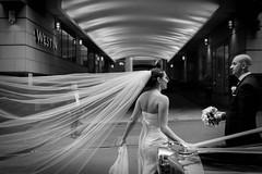 Bride and Groom - [explore] photo by McLovin 2.0