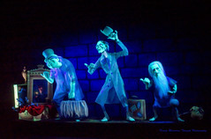 The Hitchhiking Ghosts photo by Carl Ruegg01