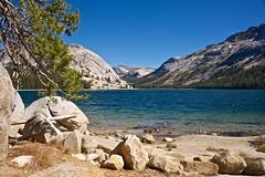 Yosemite National Park photo by haegar52002