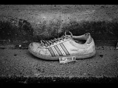 Adidas photo by LevisWagnonPhoto