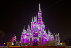 Cinderella Castle photo by Carl Ruegg01