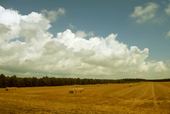 Clouds over the Summer Fields photo by Batikart