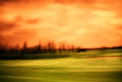 Under Orange photo by RandallTT