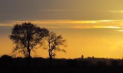 Autumn Sunset photo by ozz13x