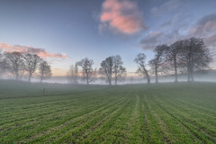 As the Mist Rolls In photo by Gareth Wray - 7 Million Hits - Thank You