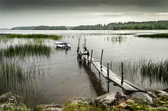 Skagern Lake (Finnerödja, Sweden) photo by dleiva
