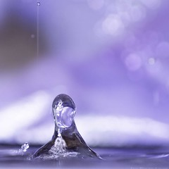 162 of 365 Splash photo by linlaw39