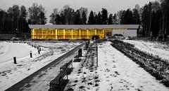 Tapiola swimming hall photo by Antti Tassberg