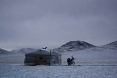 Ger camp in the snow, Gobi desert, Mongolia photo by Alex_Saurel