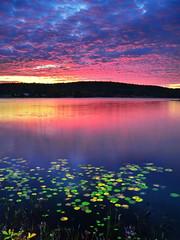 dawning glory photo by anj_p