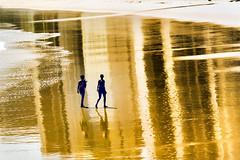 Ground of Gold photo by Antonio Ivo Prudencio